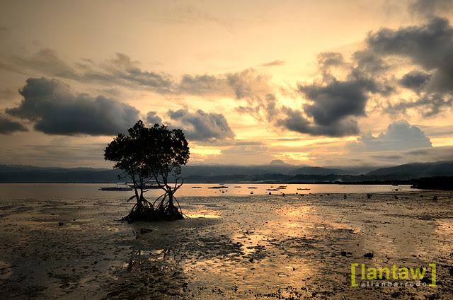 Sunset @ Marina