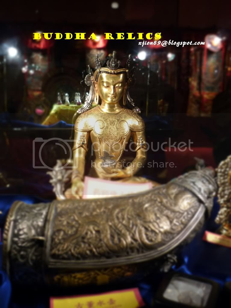 holy light from tibet 雪域之光