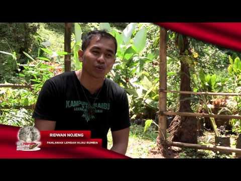 Inspirasi dari Lembah Hijau Rumbia [SATU Indonesia Award]