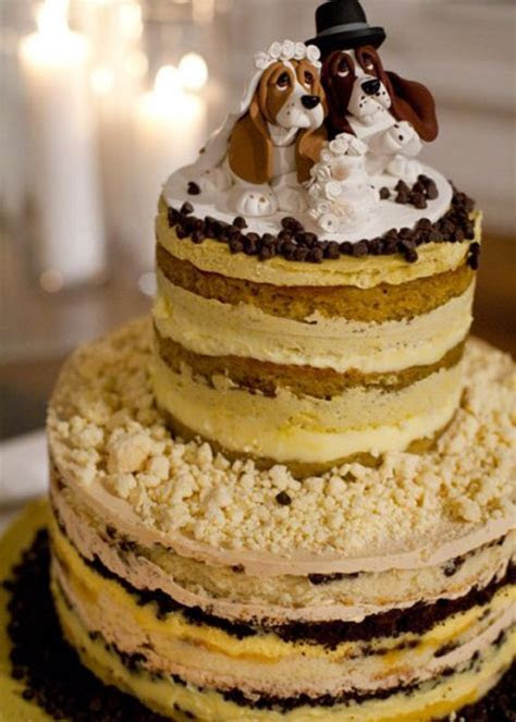 Chocolate Chip Pistachio Dog Topper Naked Wedding Cake