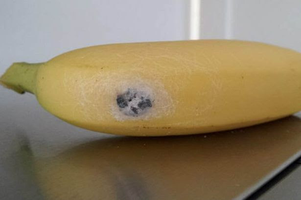 The banana complete with erection giving spiders found by shopper Maria Layton