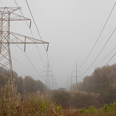 in search of the elusive smart grid