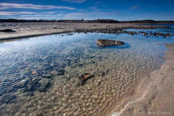 looking inland, coastal water, Wells Reserve