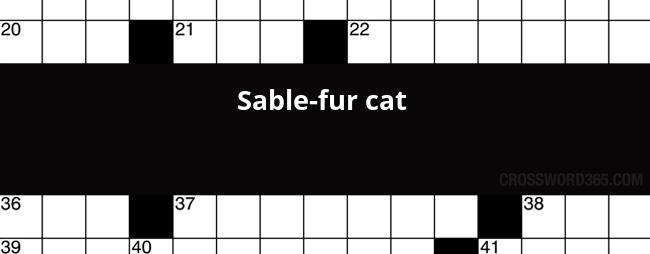 Sable Fur Cat Crossword Clue