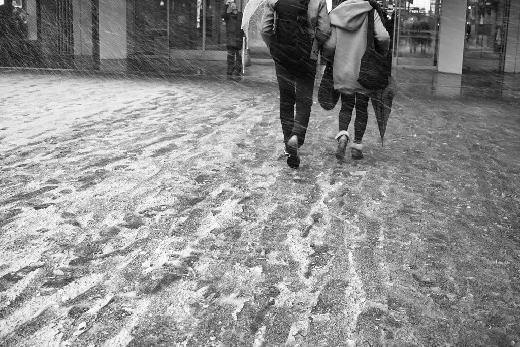 Heavy Snow Yokohama - 2013.02.14 - DP2M