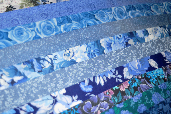 blue floral strips