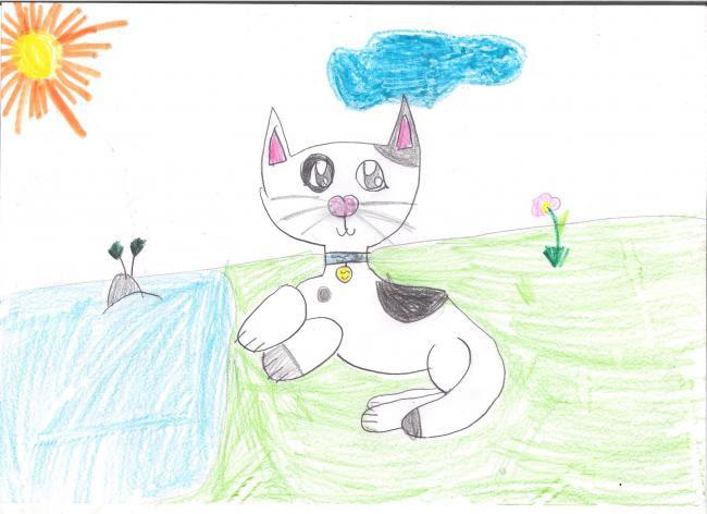 Rysunek Kotek