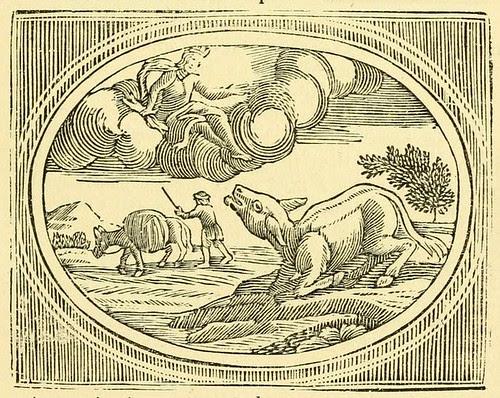 Asinus et Iuppiter
