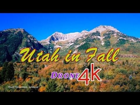 Breathtaking Utah Autumn Colors: Big Cottonwood Canyon, Little Cottonwood Canyon and Bell Canyon
