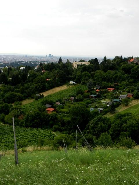 Kahlenberg_2012_11