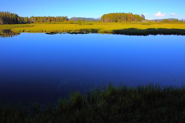 IMG_7939 Swan Lake