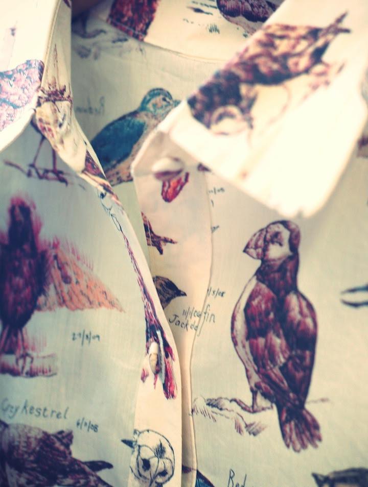 nadinoo - birds