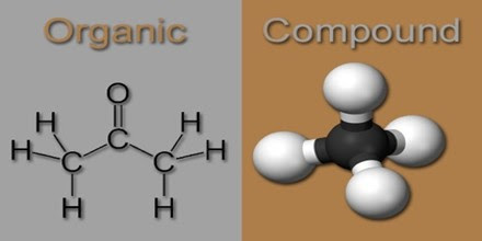 Organic Compound - Assignment Point