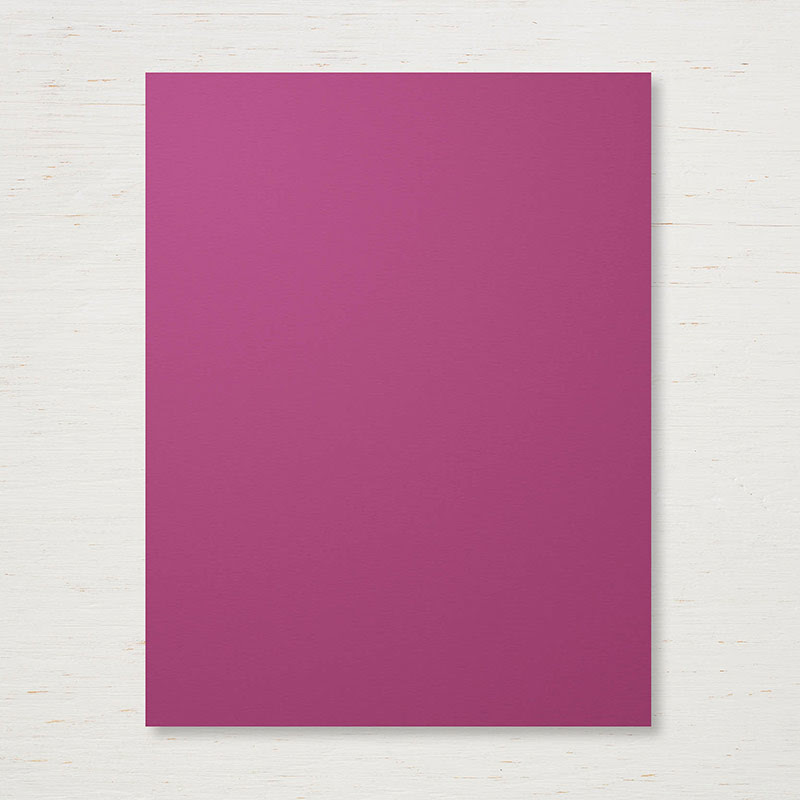 Rich Razzleberry Cardstock by SU