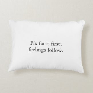 Fix Facts First Pillow