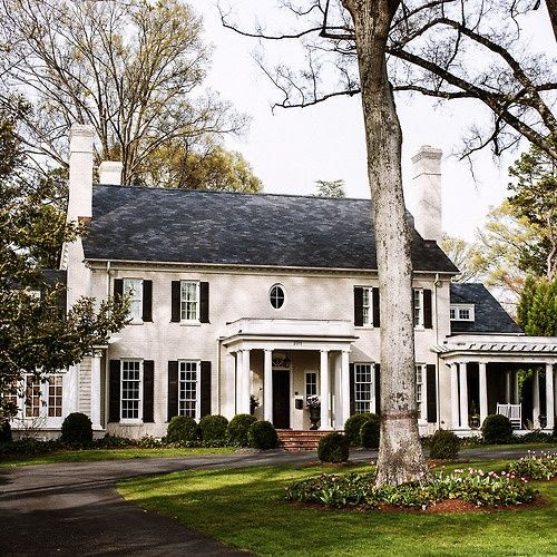 Beautiful white house with tree in front yard | Friday Favorites at www.andersonandgrant.com