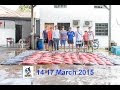 Seaworld Fishing 14-17 March 2015