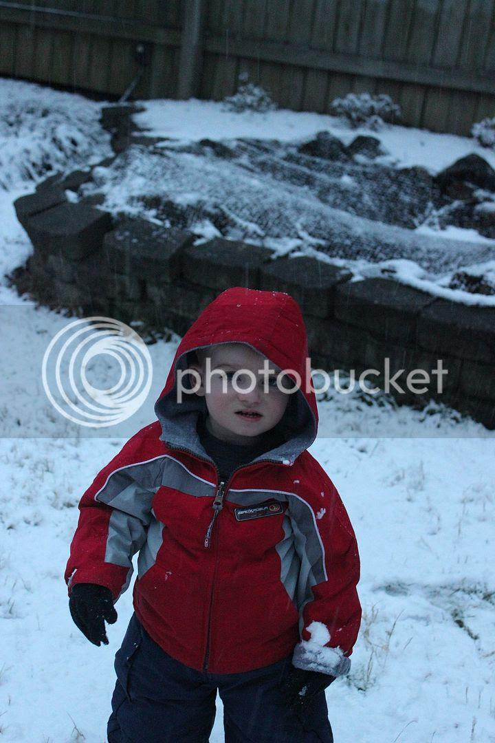 photo snow20_zps84661b2f.jpg