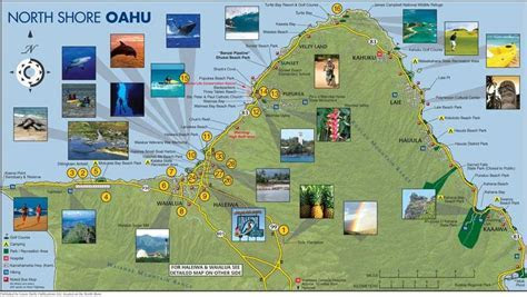 1000  images about Hawaii on Pinterest