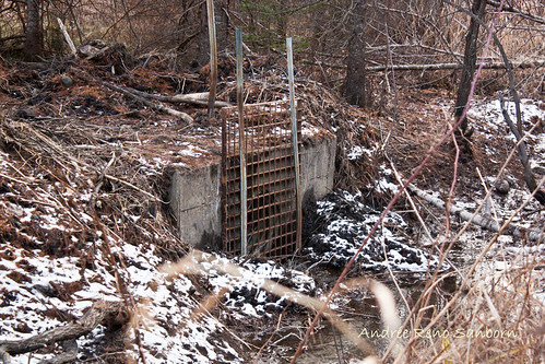The Remains of the Dam (2 of 6).jpg