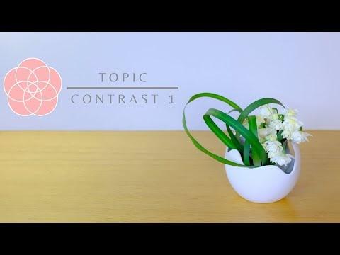 Contrast 1 - Video
