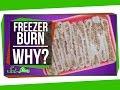 Truth Behind Freezer Burn - Video