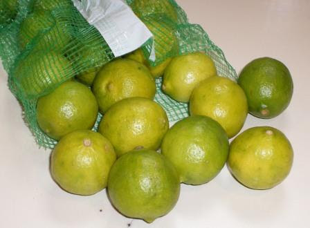 Key Limes from Florida