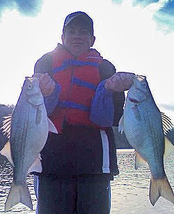 Sand bass at Lake Broken Bow with fishing guide Bryce Archey