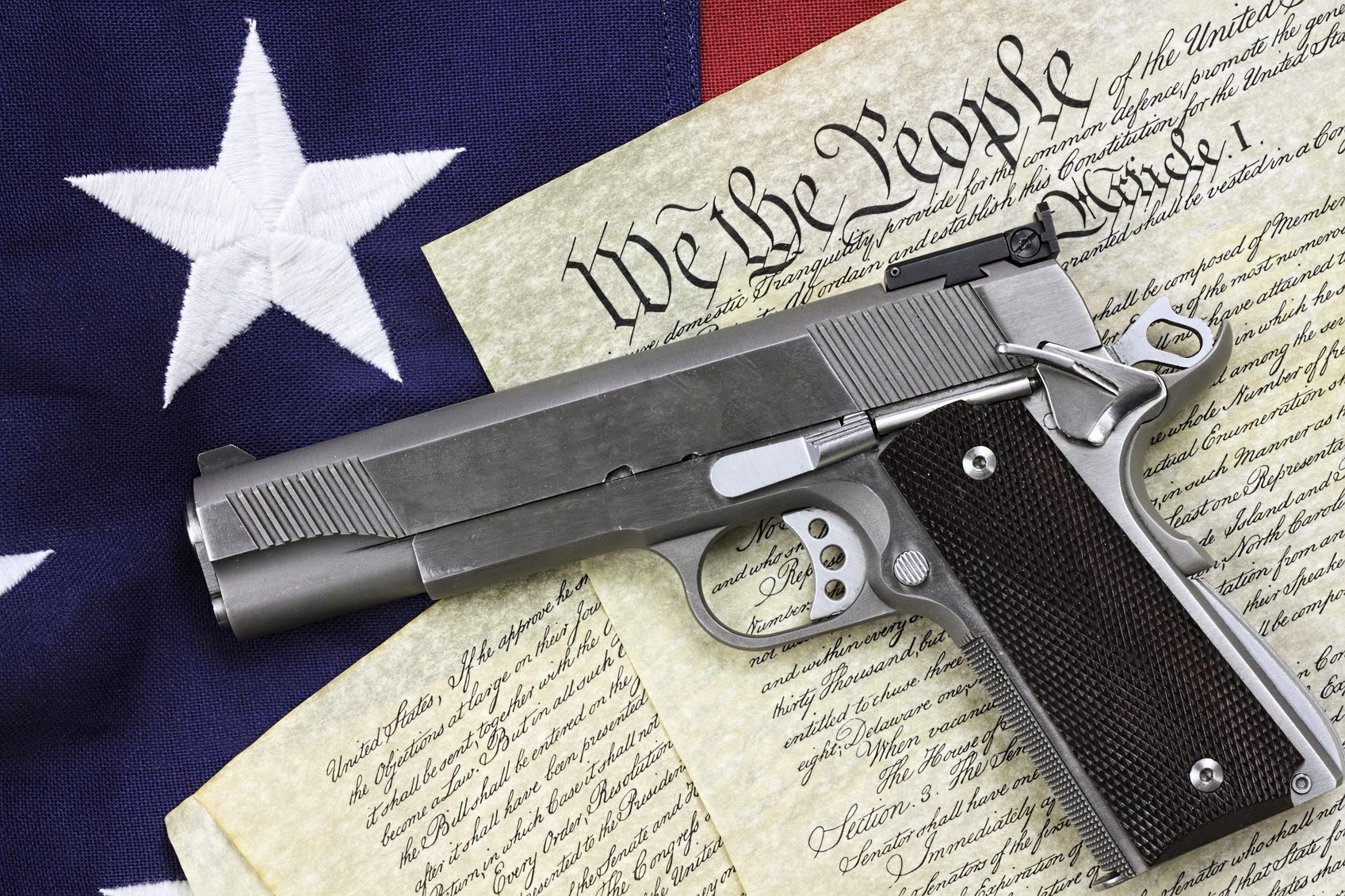 Image result for gun rights