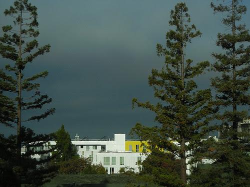 DSCN9206 _ Foggy Morning, Berkeley, CA