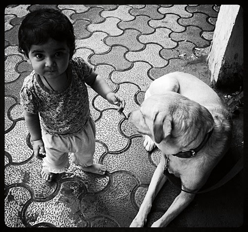 Nerjis Asif Shakir And Lucky The Labrador by firoze shakir photographerno1