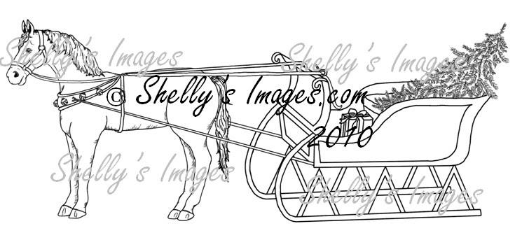 shellysimages.com-sleighridethumb