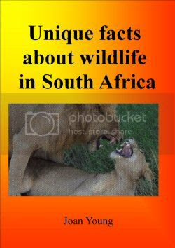 Unique Facts About Wild Life in S. Africa by Joan Young