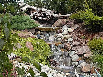 The Best Backyard Water Feature Will Add Interest and Beauty