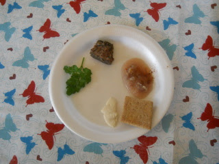 Passover Ceder Plate