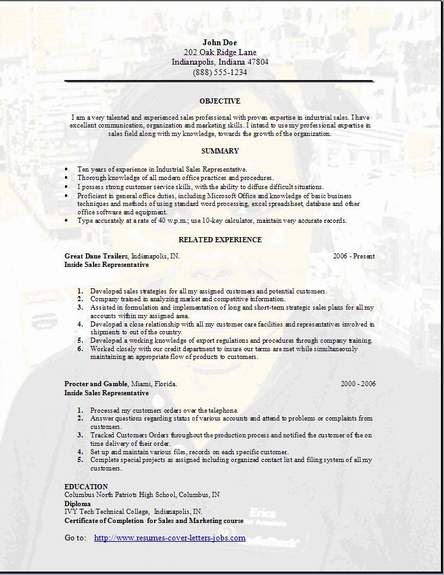 application letter for sales lady example