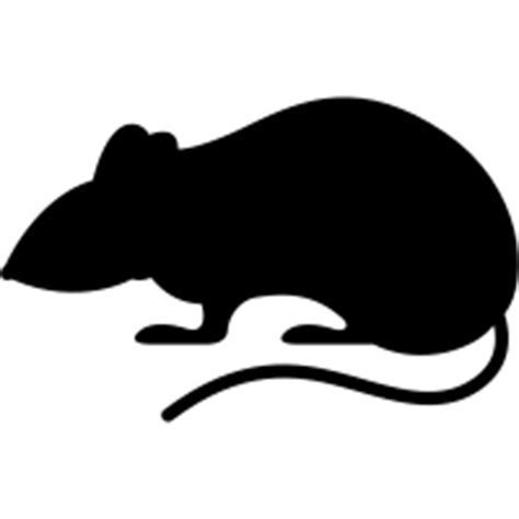 Rat icons   Noun Project