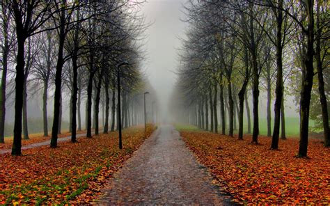 beautiful autumn wallpaper full hd