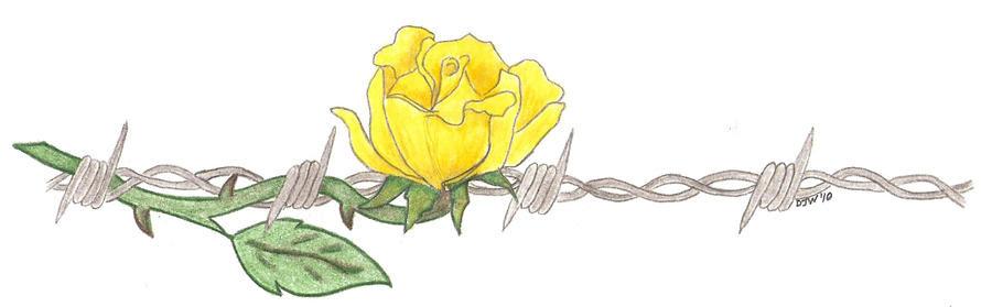 Barbed Wire Tattoo Rose Eydt