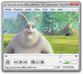 VLC on Windows