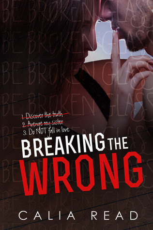 Breaking the Wrong (Sloan Brothers, #2)