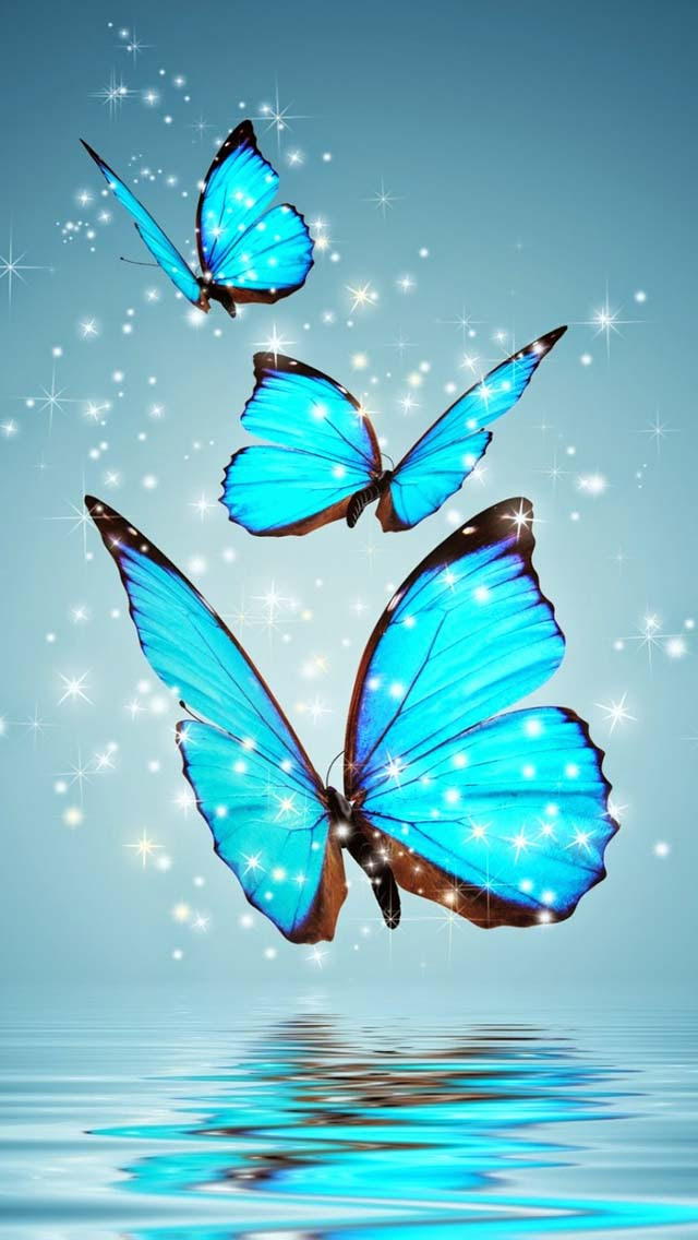 Butterfly - Mobile Wallpapers
