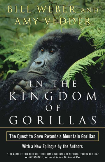 In The Kingdom Of Gorillas The Quest To Save Rwandas Mountain Gorillas