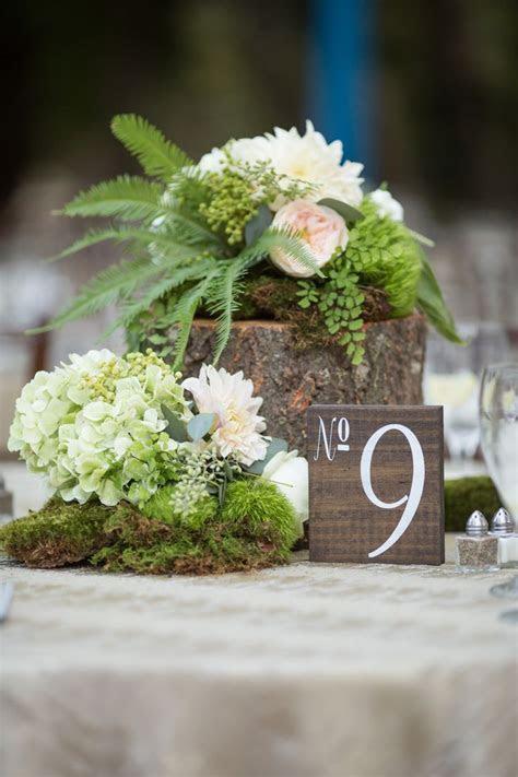 25  best ideas about Moss Centerpieces on Pinterest   Moss