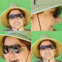 coelemu-collage