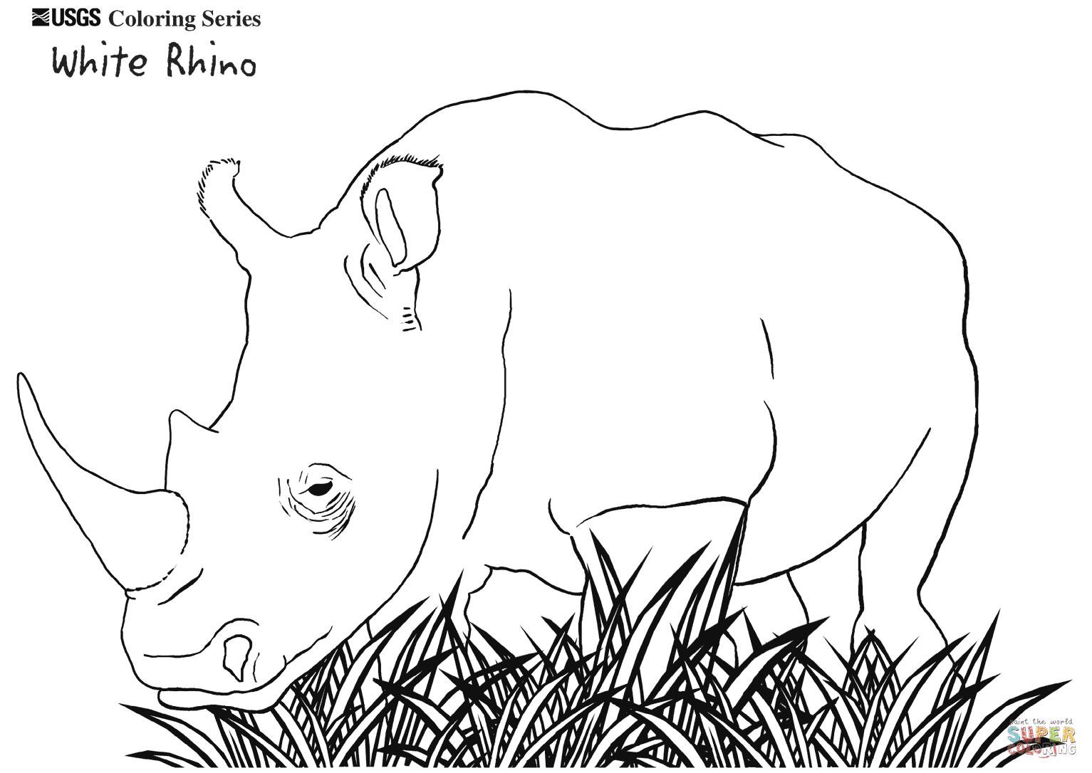 Coloriage En Ligne Rhinoceros.Belle Coloriage Rhinoceros A Imprimer Haut Coloriage Hd