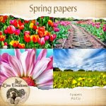 Spring papers