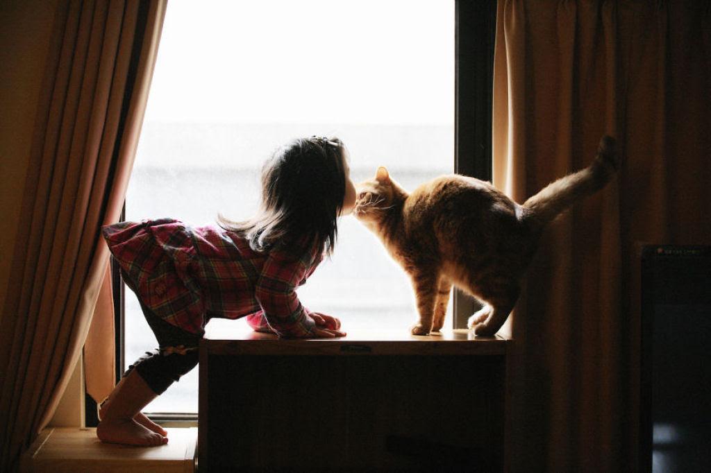 20 crianças brincando com seus gatos que alegrarão o seu dia 15