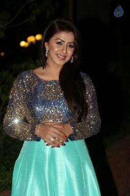 Nikki Galrani New Photos - 24 of 36