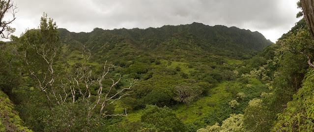 Moanalua.Middle.Ridge